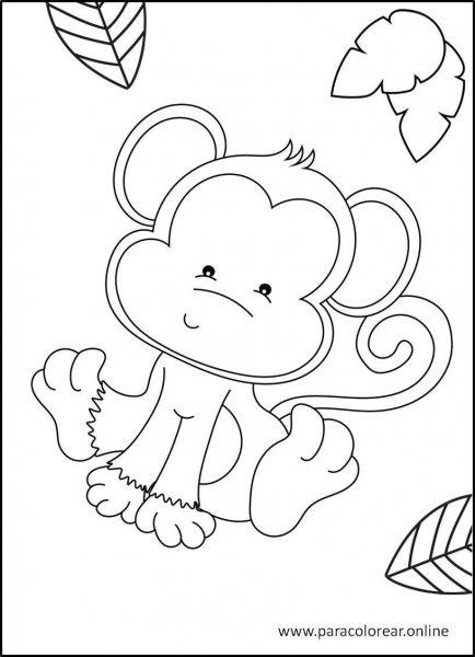 Animales-de-la-selva-para-colorear-5
