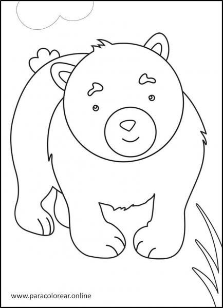 Animales-del-bosque-para-colorear-2