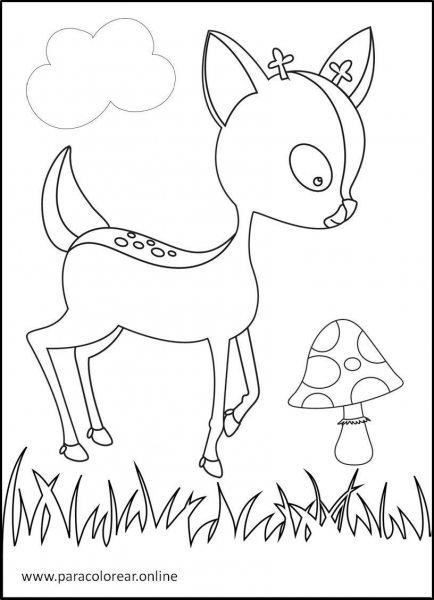 Animales-del-bosque-para-colorear-4