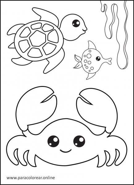 Animales-marinos-para-colorear-10