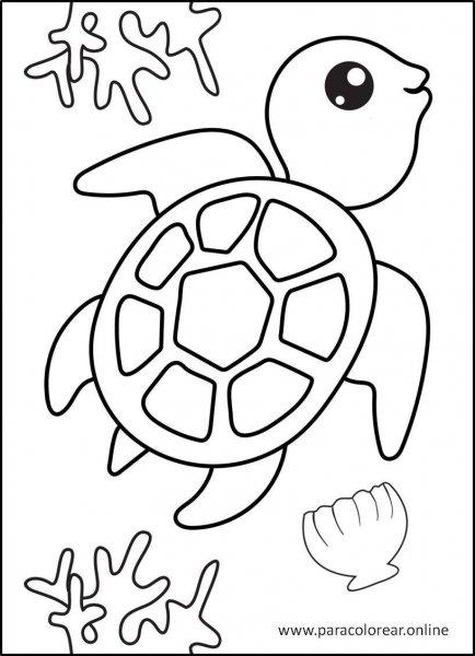 Animales-marinos-para-colorear-5