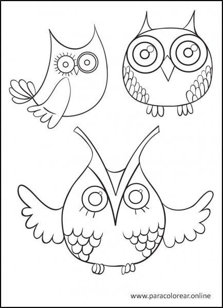 Buhos-para-colorear-3