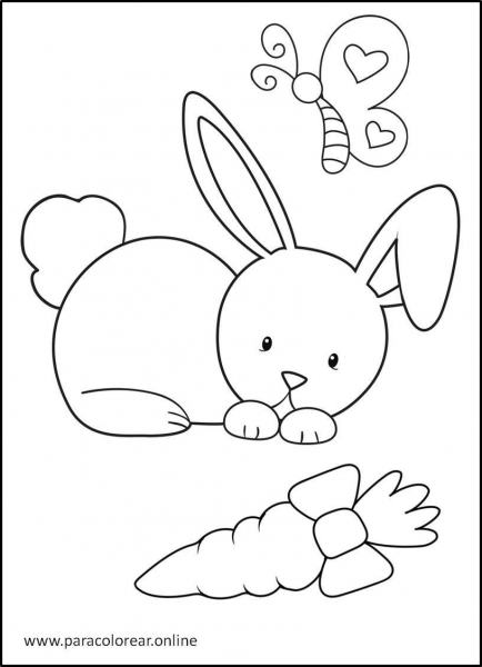 Conejos-para-colorear-2