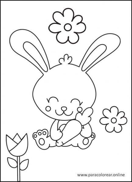 Conejos-para-colorear-3