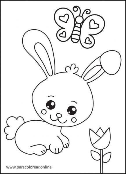 Conejos-para-colorear-4