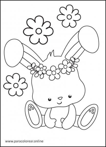 Conejos-para-colorear-6