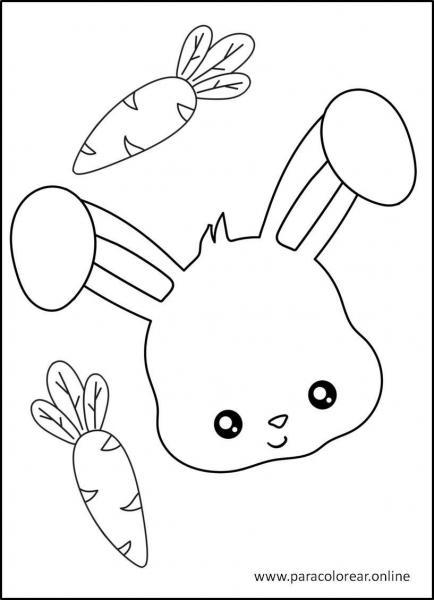 Conejos-para-colorear-7