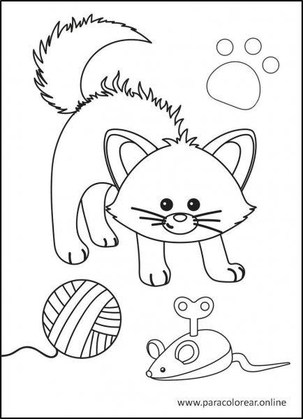 Gatos-para-colorear-11