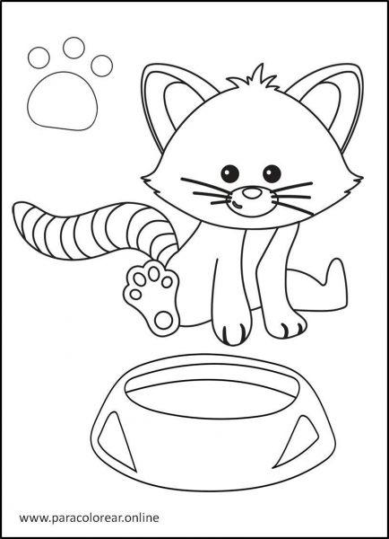 Gatos-para-colorear-12