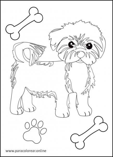 Perros-para-colorear-6