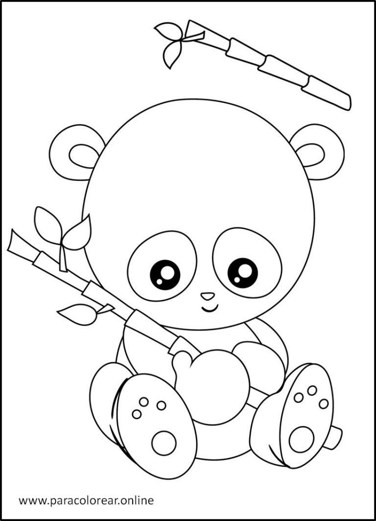 Osos panda para descargar y colorear