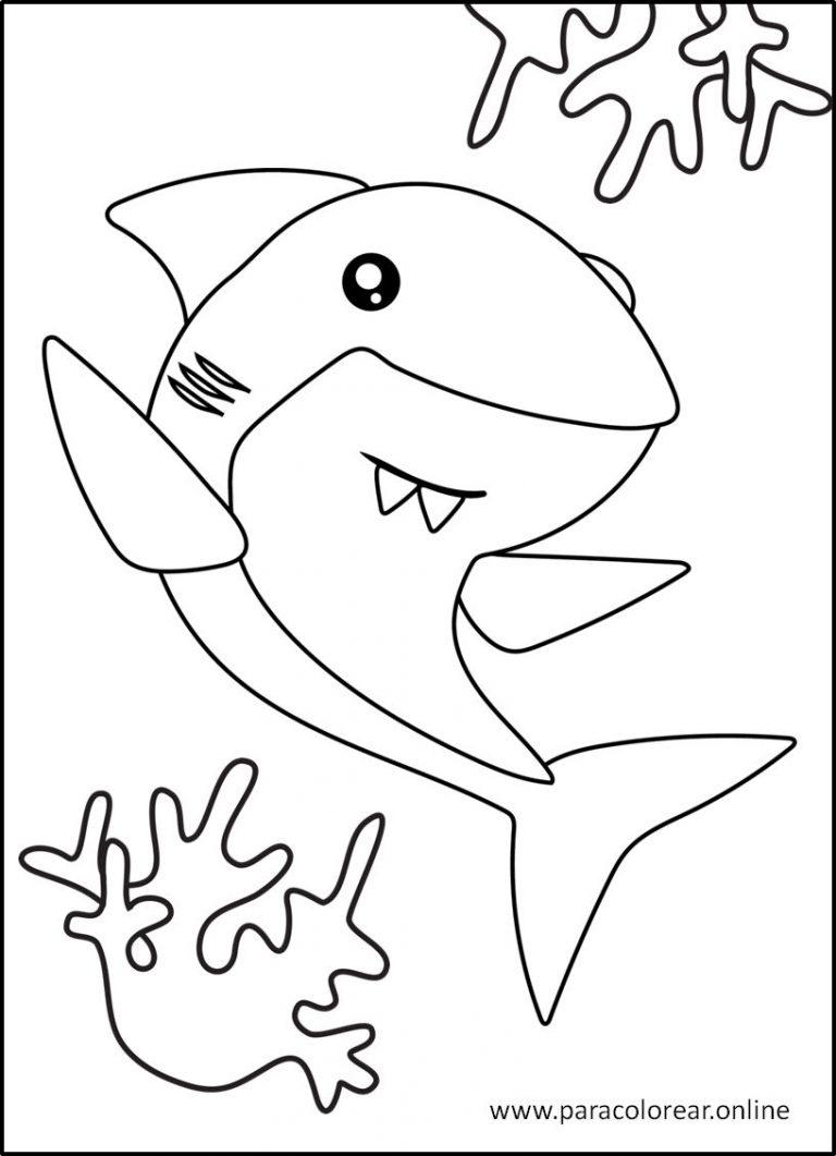 Tiburones para pintar y colorear
